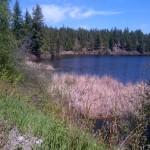 Hogsback lake